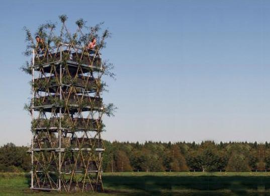 treebuilding