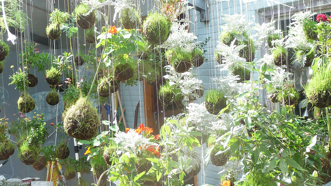 string gardens fliegende g rten lilli green. Black Bedroom Furniture Sets. Home Design Ideas