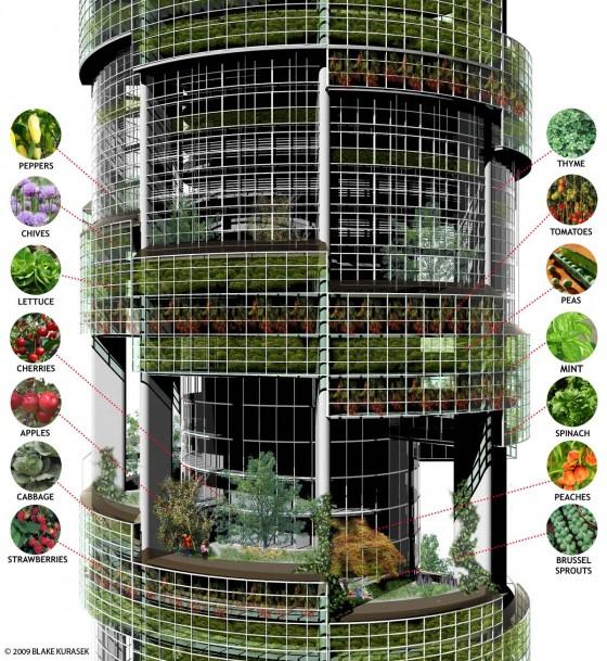 Entwurf von Blake Kurasek - Einblick in das Gebäude für das Vertical Farm Project 2009