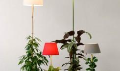 helmut-smits-plant-lamp-01
