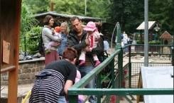 Besucher auf der Knirpsenfarm