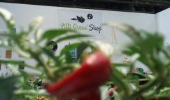 Shop-at-z-n-e