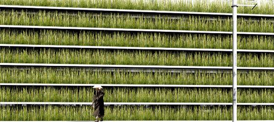 park haus in tokyo lilli green magazin f r nachhaltiges design und lifestyle. Black Bedroom Furniture Sets. Home Design Ideas