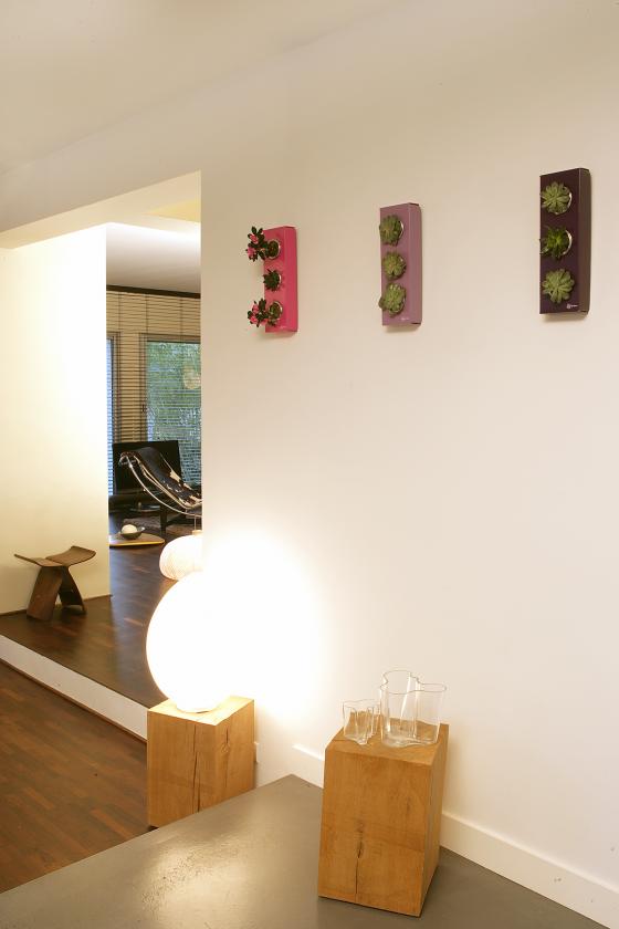 flowerbox blumen f r die wand lilli green magazin. Black Bedroom Furniture Sets. Home Design Ideas