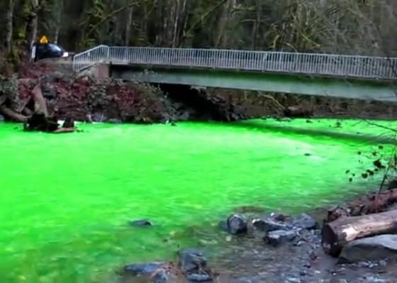 [Bild: Goldstream-green-river-560x399.jpg]