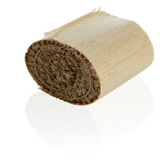 LilliGreen-Rohrkolbenpflanze2