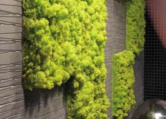 vertikaler garten f r b ro und wohnung lilli green. Black Bedroom Furniture Sets. Home Design Ideas