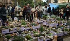 orto-errante-garden-crowd1
