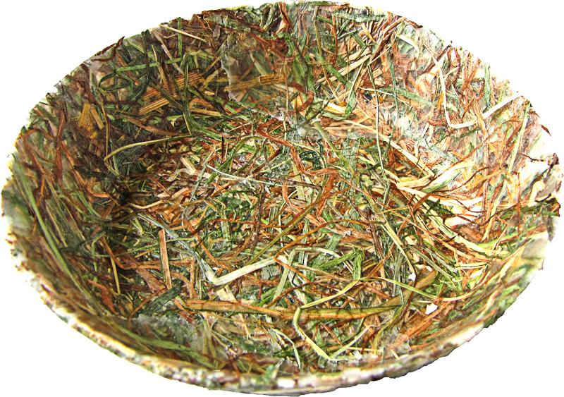 schale glatt2 | lilli green® - magazin für nachhaltiges design und,