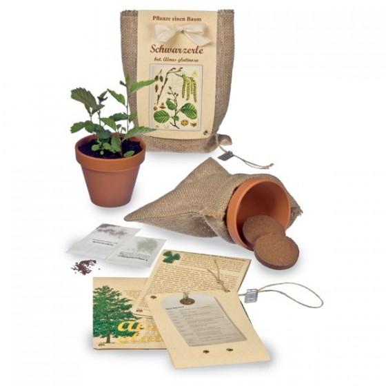 jetzt pflanzen gie en ernten und freuen lilli green magazin f r nachhaltiges design und. Black Bedroom Furniture Sets. Home Design Ideas