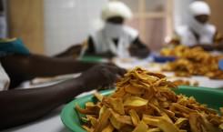 Getrocknete Mangos - Fairtrade von Gebana