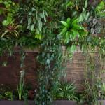 Summer Rayne Oaks - hanging gardens
