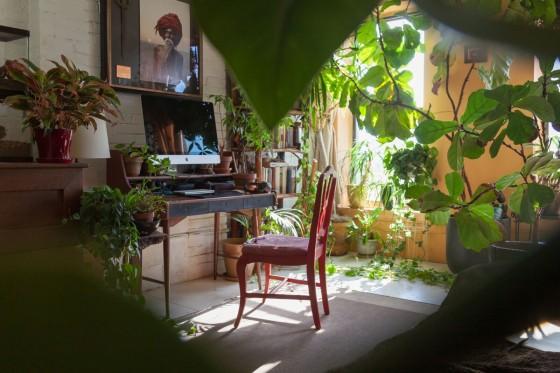 sro-indoor-jungle-desk