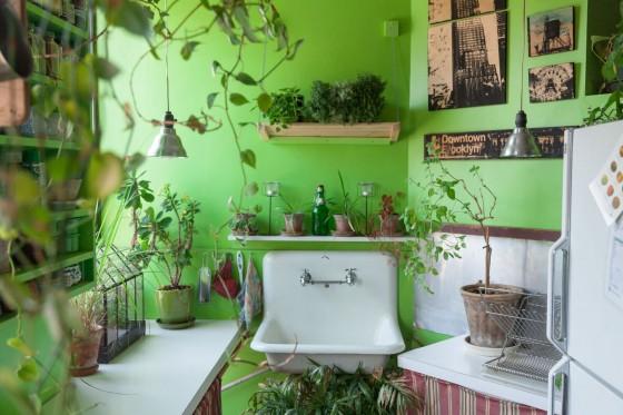 Summer Rayne Oaks - Indoor Jungle
