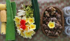 Nadis Organic - Naturkosmetik aus Bali