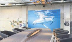 Plastic Whale - Circular Funriture