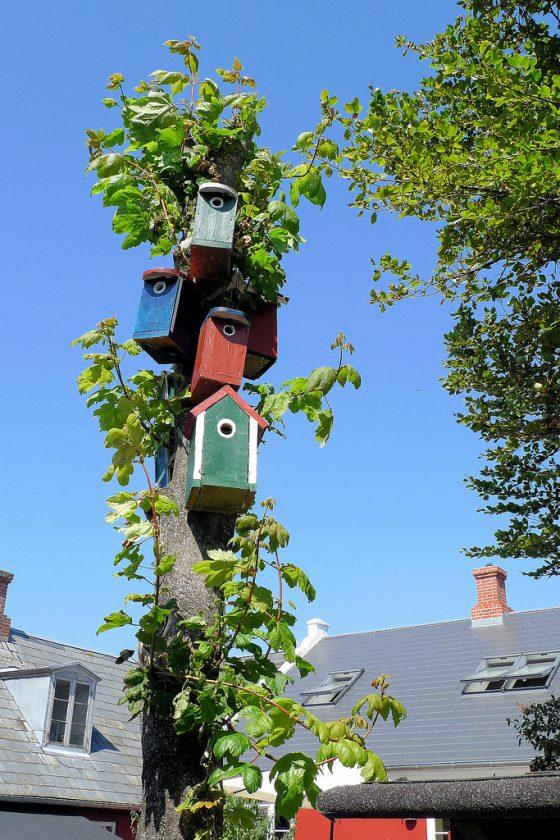 Vogelhauskette am Baum