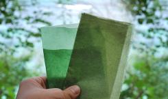 evoware bioplastik aus algen