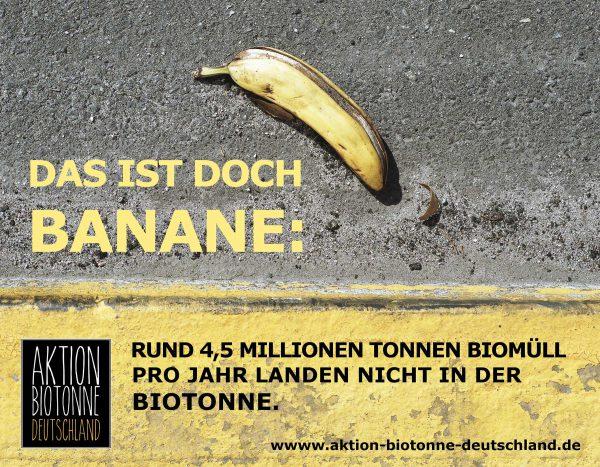 ABD – Das ist doch Banane