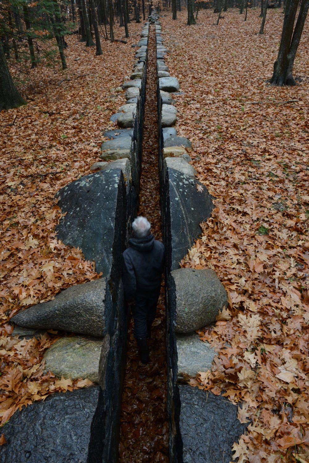 leaning into the wind - film über künstler andy goldsworty