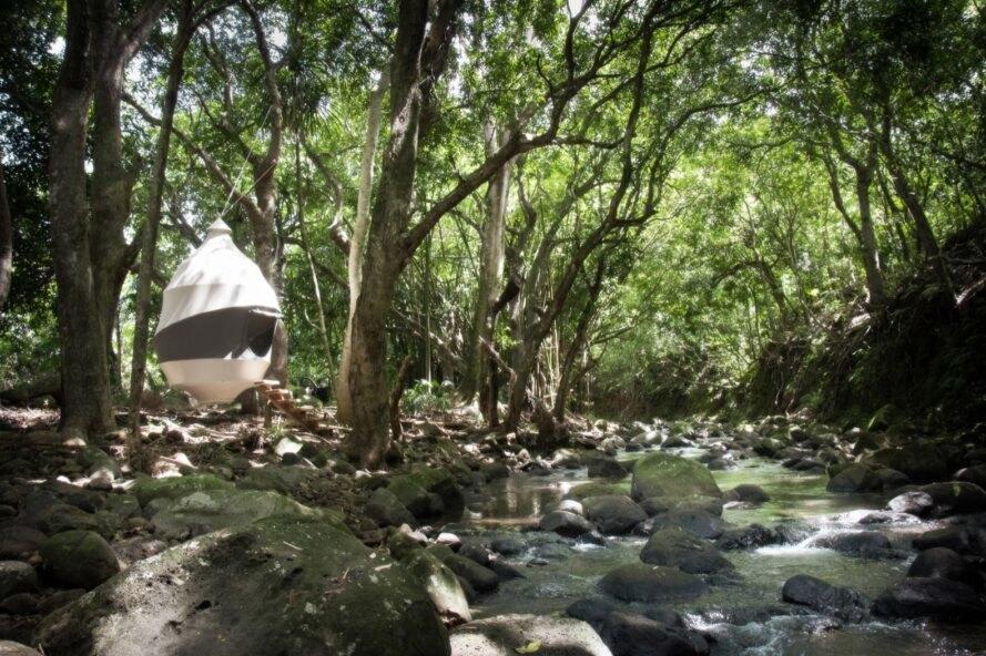 Seedpod - nomadisches Baumhaus oder Baumzelt