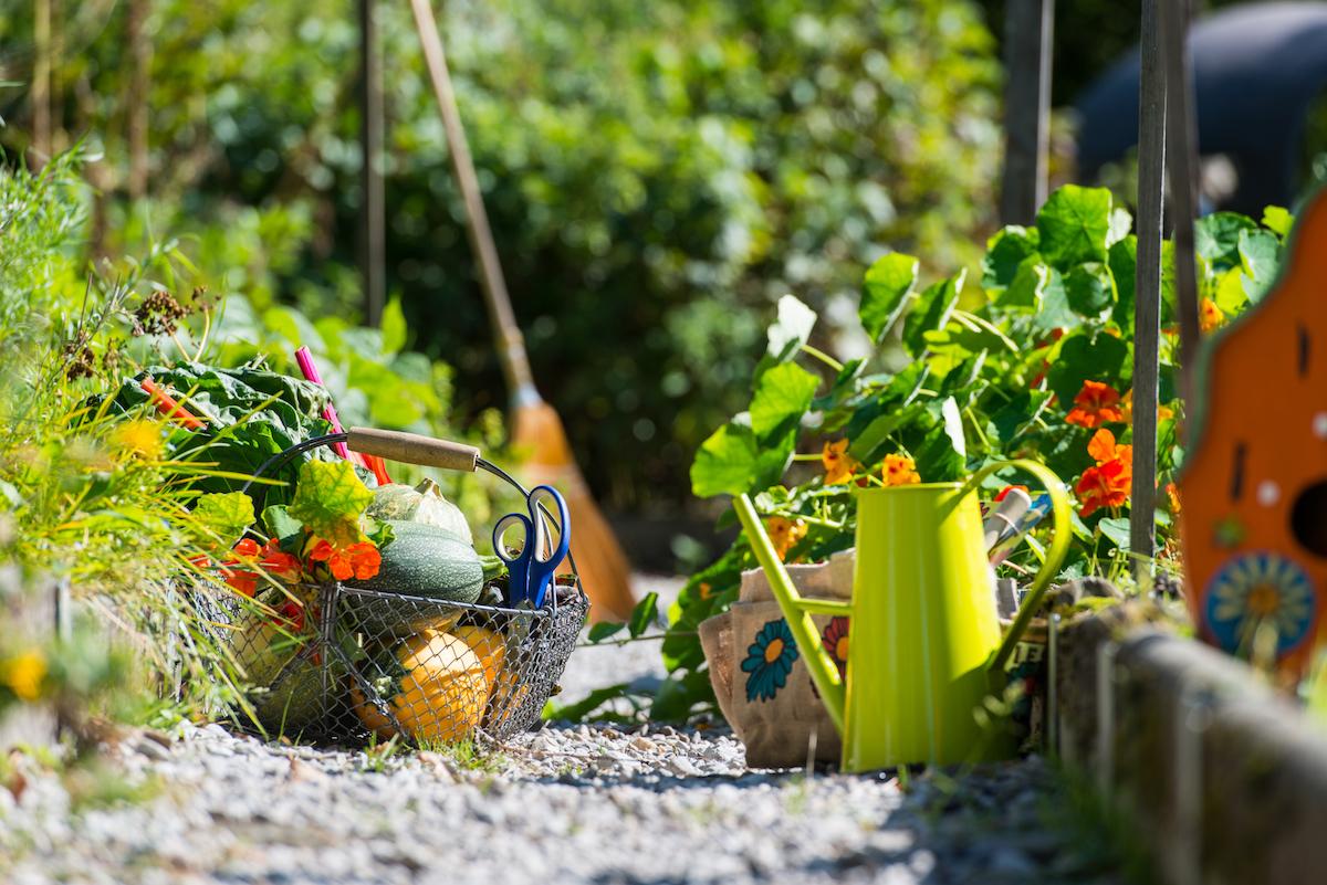 Biohotel Grafenast Tiroler Alpen Biogarten