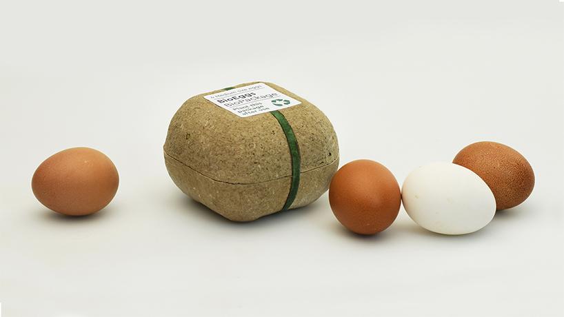 Circular Design - Verpackung aus Samen und Erde