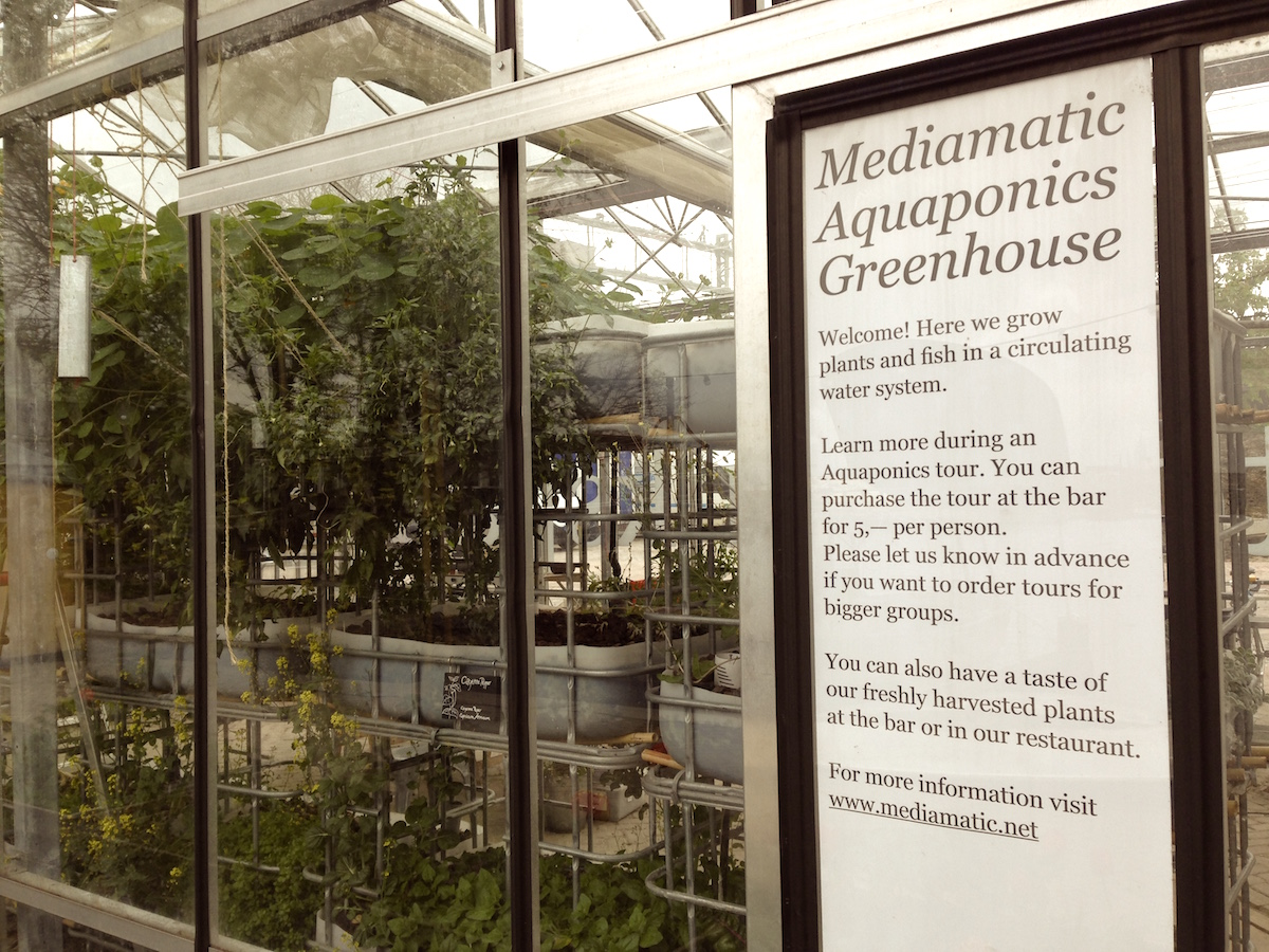 Eco Design Hotspots Amsterdam Aquaponics Greenhouse