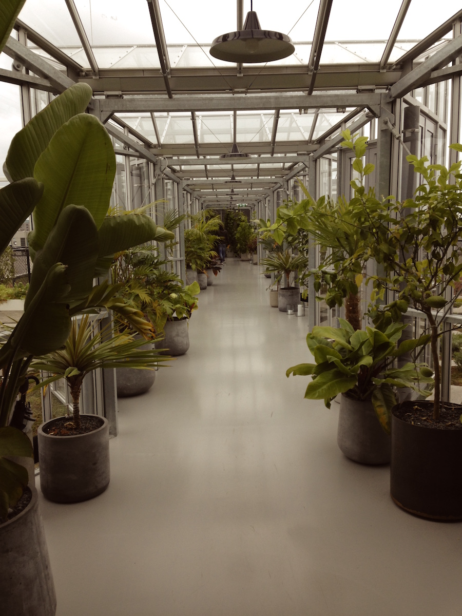 Eco Design Hotspots Amsterdam Zuko Eingang