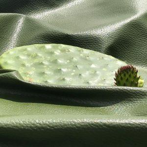 Vgeanes Leder aus Kaktus
