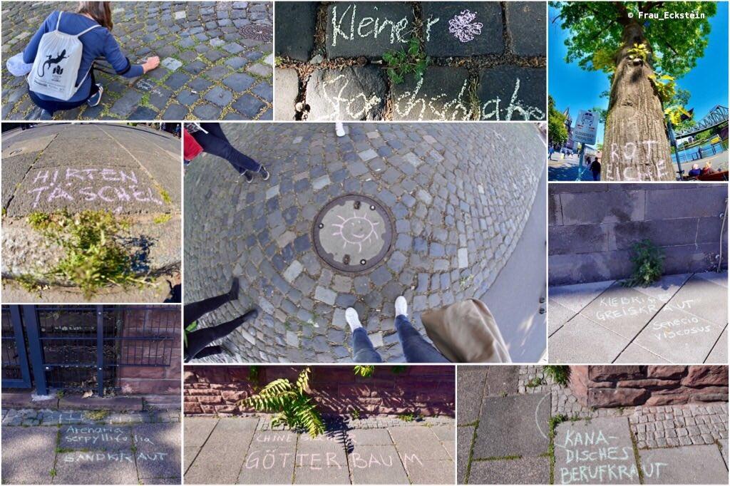 #Krautschau - Graffiti mit Pflanzen in Frankfurt