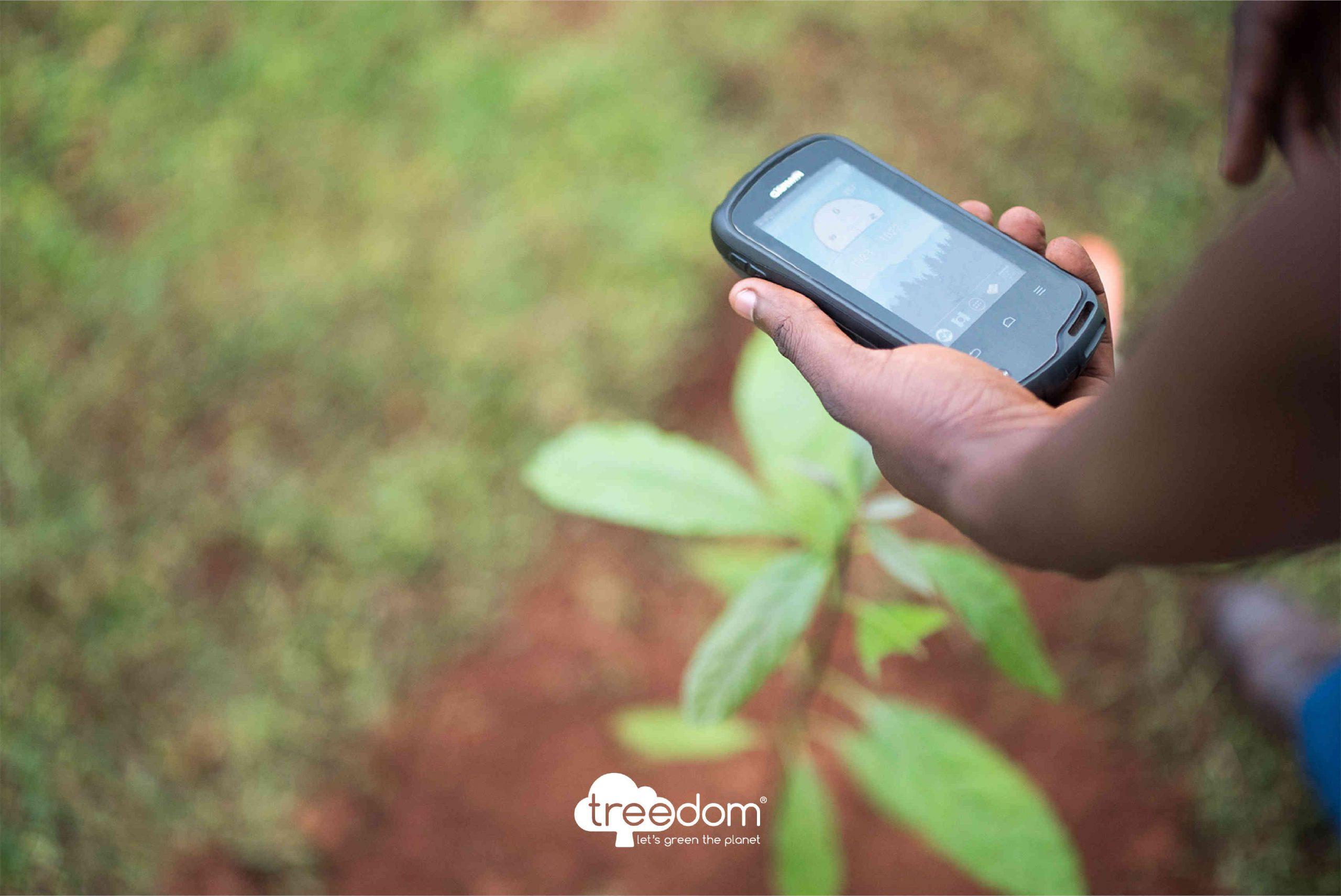 Baumpflanzen per App