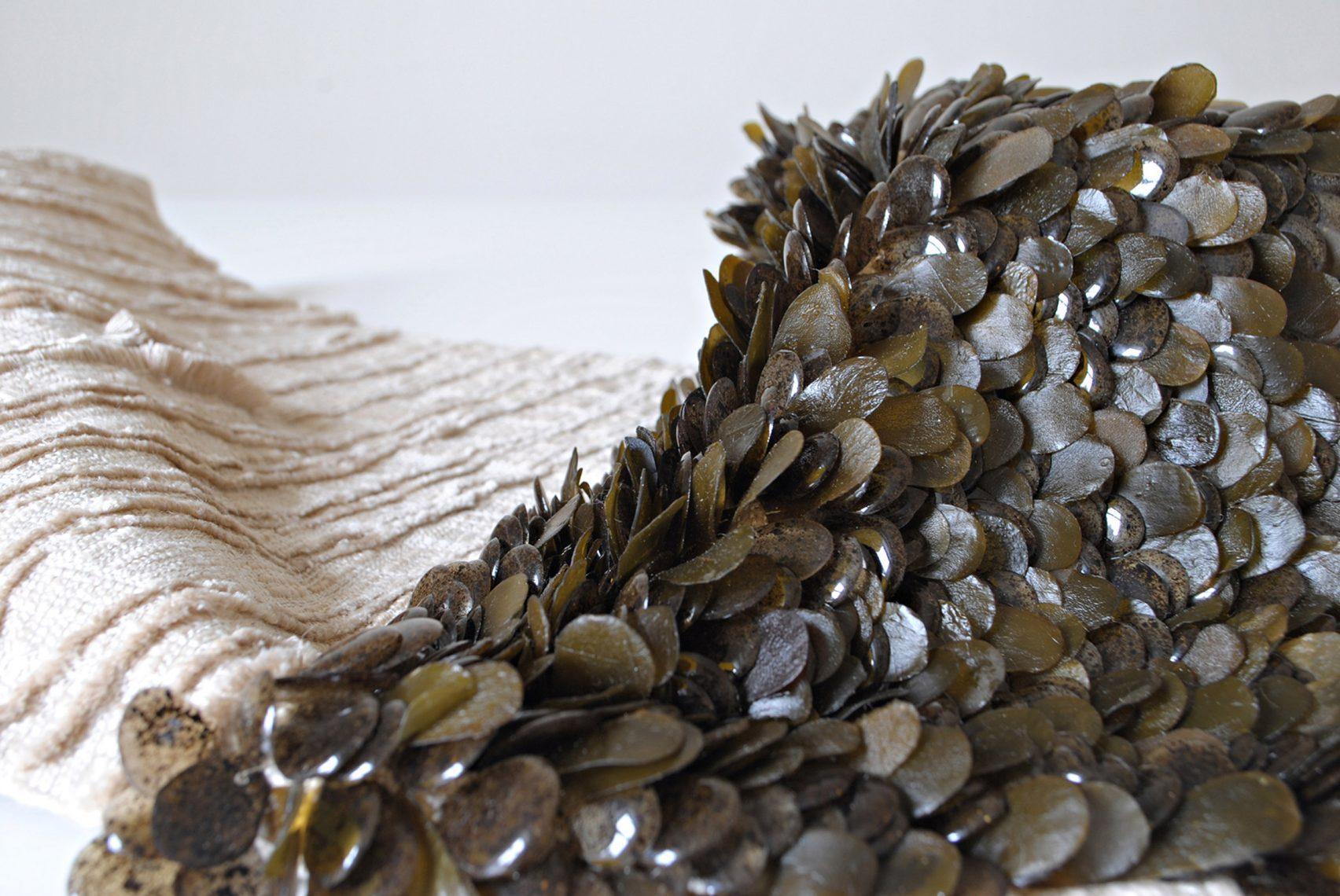 Nachhaltige Textilinnovationen aus Algen