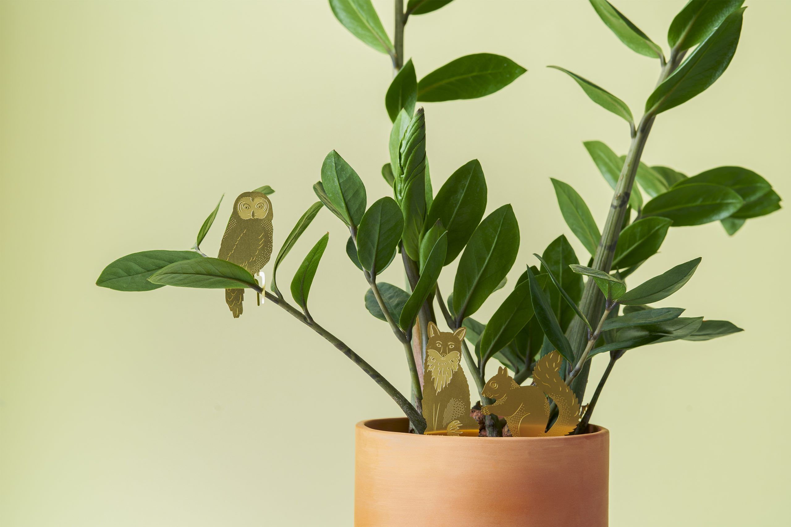 Plant Animals Pflanzendeko