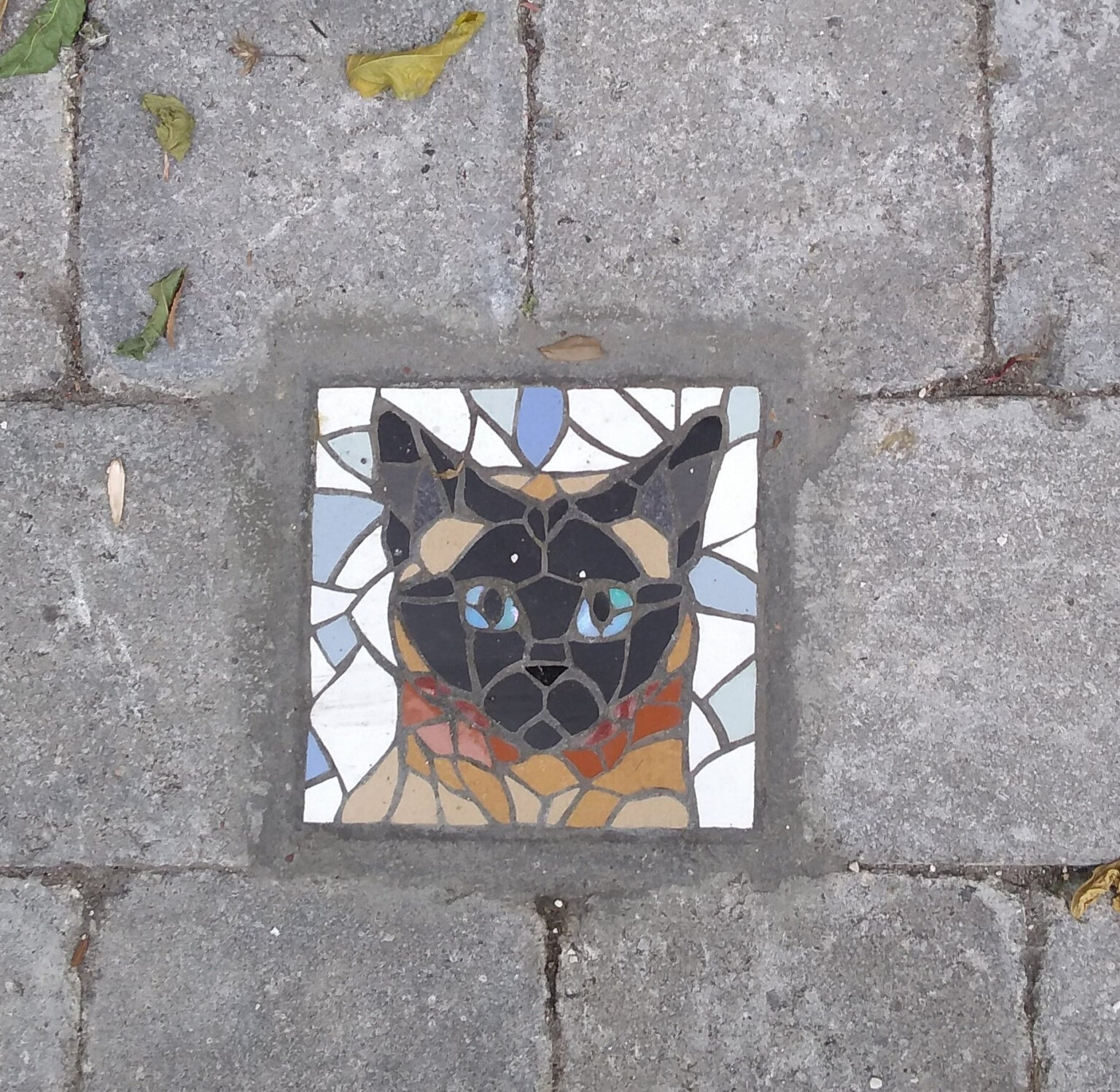 Strassenkunst Katze aus Mosaikfliesen