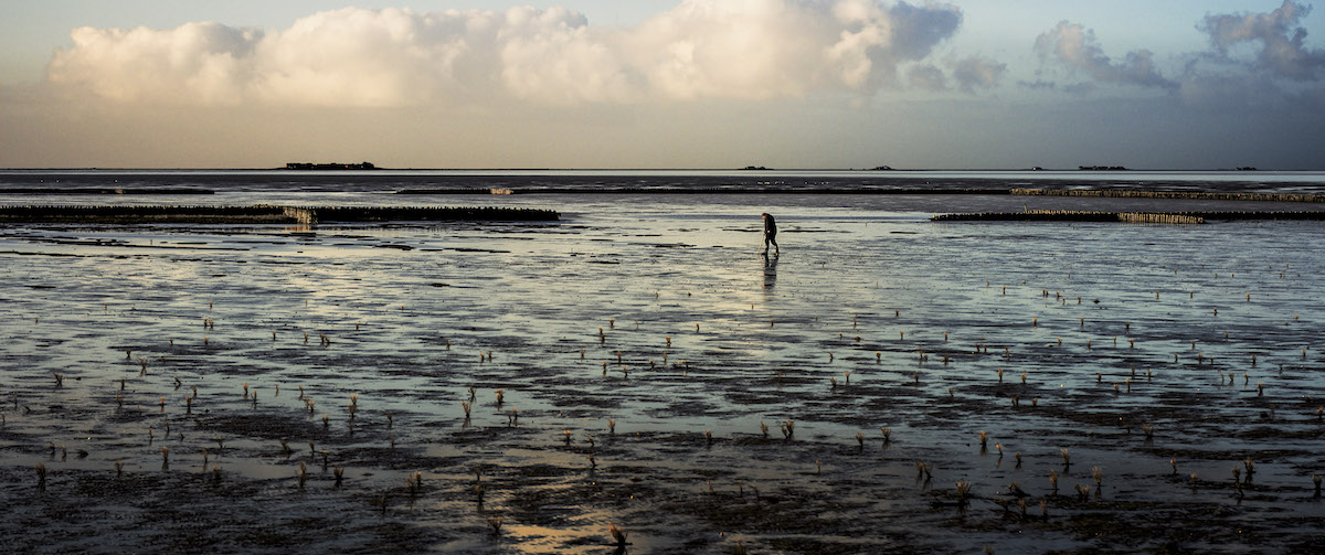 Der Atem des Meeres - Filmstill