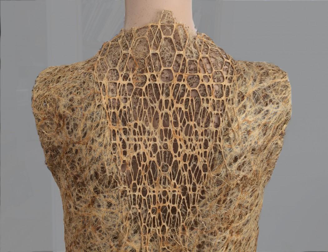 Nachhaltige Textilien aus Pflanzenwurzeln